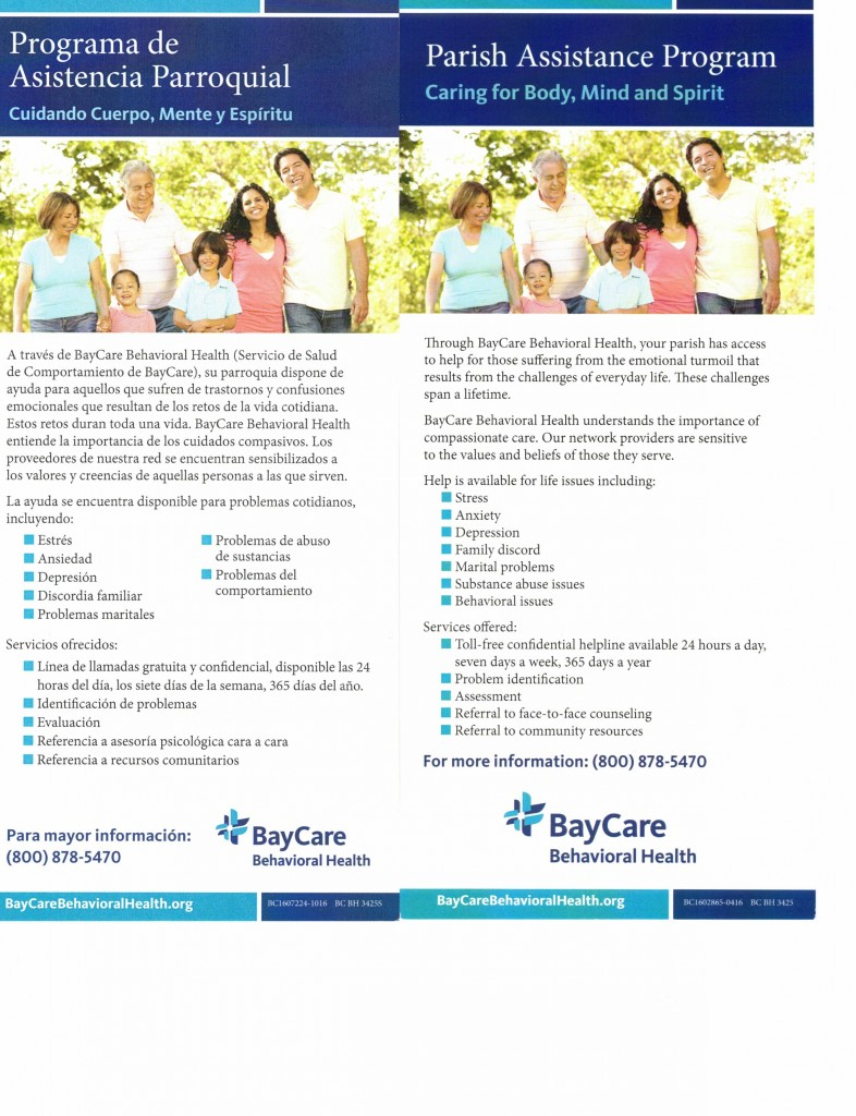 BayCare Poster_000009